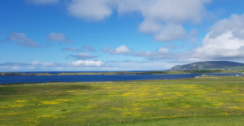 Near Sumburgh towards Horse Island