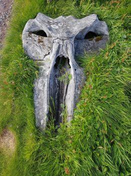 Whale Skull Sumburgh